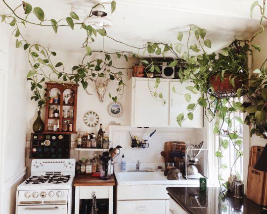 brincando-de-casinha-dicas-de-decoracao-blog-mari_plantas-6